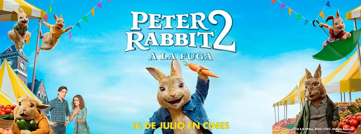 C - PETER RABBIT